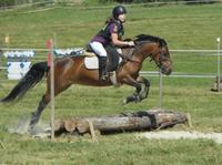 CCE, Hunter, Dress, Equifun
